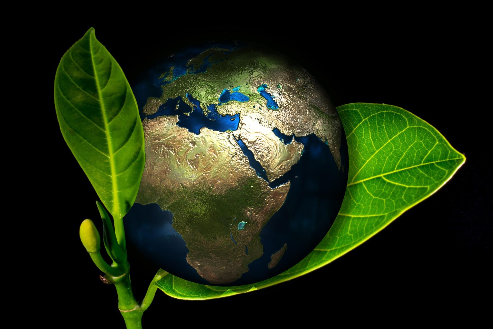 modelo de negocio sostenible